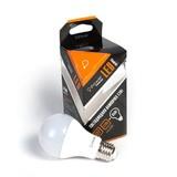 Светодиодная лампа iPower Premium IPPB12W2700KE27